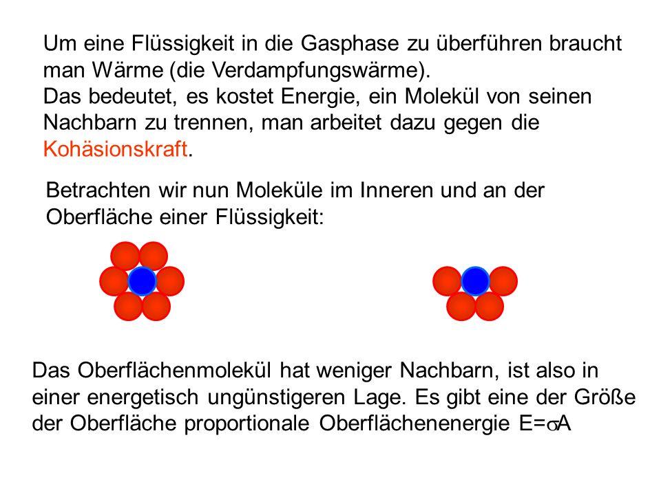 Neben Kohäsionskräften (die die Moleküle der Flüssig- keit zusammenhalten) gibt es auch Adhäsionskräfte, die aus der Wechselwirkung der Moleküle mit Oberflächen, die sie benetzen, entstehen.