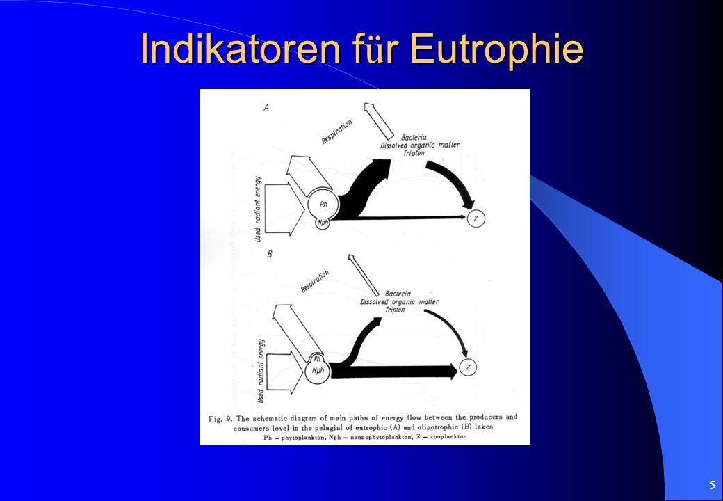 5 Indikatoren f ü r Eutrophie