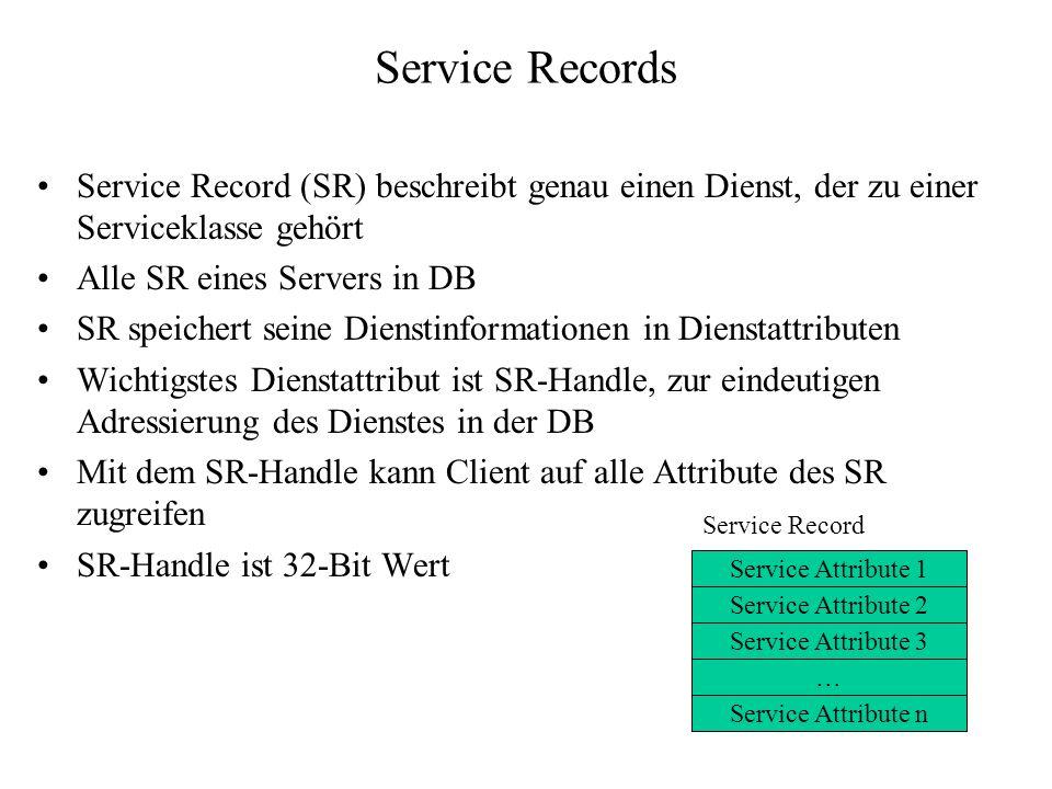Service Records Service Record (SR) beschreibt genau einen Dienst, der zu einer Serviceklasse gehört Alle SR eines Servers in DB SR speichert seine Di