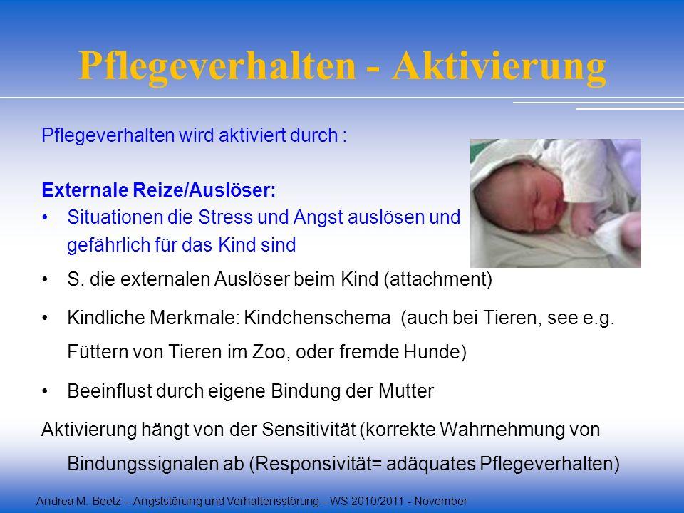 Andrea M. Beetz – Angststörung und Verhaltensstörung – WS 2010/2011 - November Pflegeverhalten - Aktivierung Pflegeverhalten wird aktiviert durch : Ex