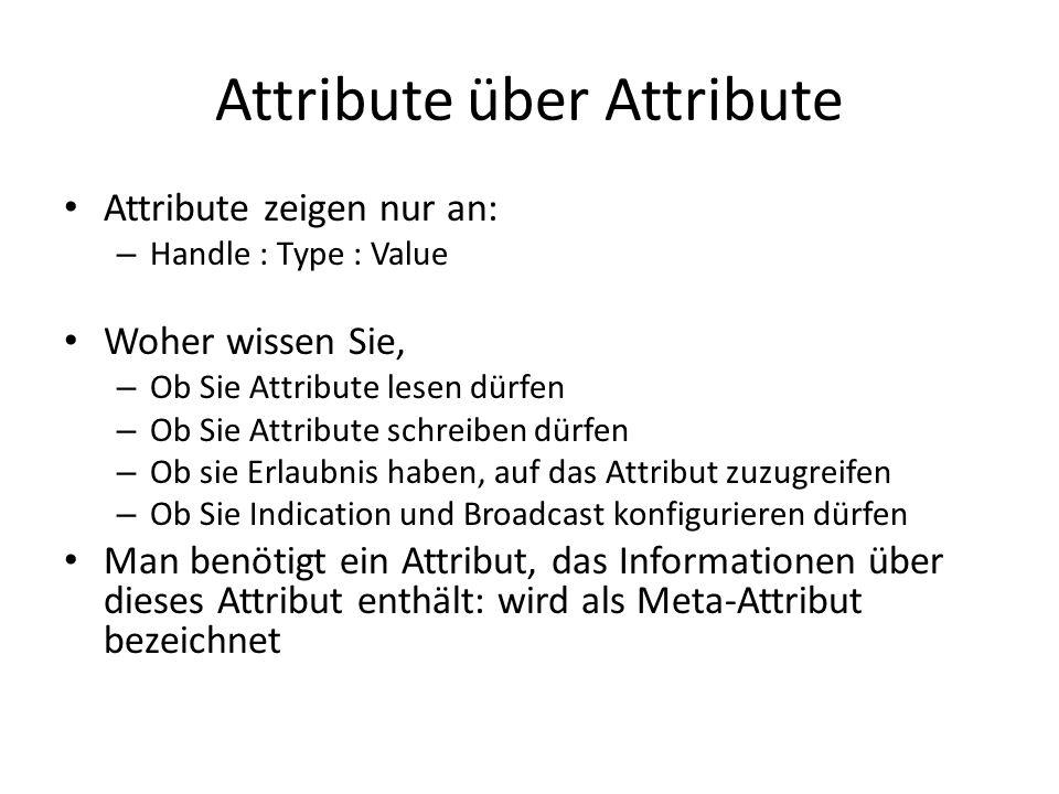 Attribute über Attribute Attribute zeigen nur an: – Handle : Type : Value Woher wissen Sie, – Ob Sie Attribute lesen dürfen – Ob Sie Attribute schreib