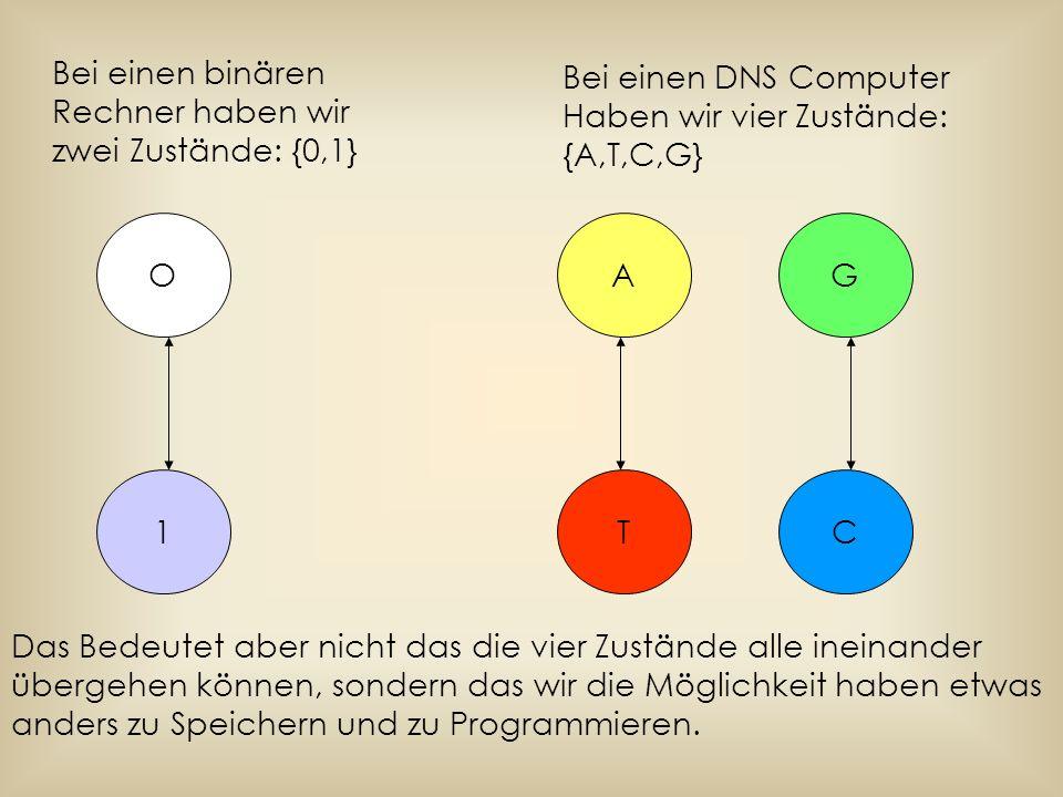 O 1 Bei einen binären Rechner haben wir zwei Zustände: {0,1} CT GA Bei einen DNS Computer Haben wir vier Zustände: {A,T,C,G} Das Bedeutet aber nicht d