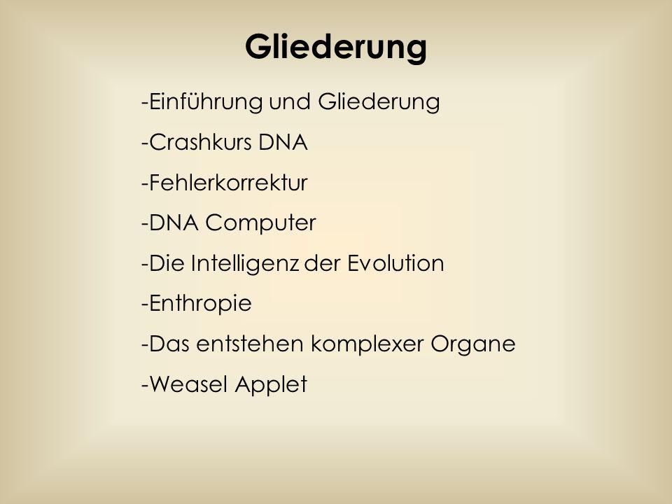 -Einführung und Gliederung -Crashkurs DNA -Fehlerkorrektur -DNA Computer -Die Intelligenz der Evolution -Enthropie -Das entstehen komplexer Organe -We