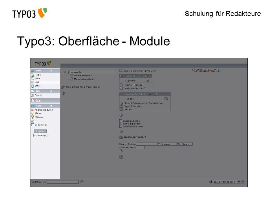 Schulung für Redakteure Typo3: Oberfläche - Module