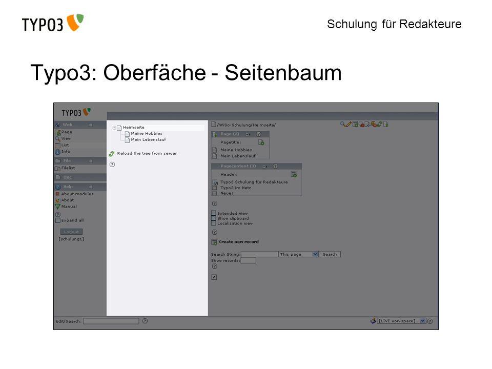 Schulung für Redakteure Typo3: Oberfäche - Seitenbaum