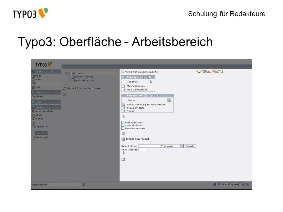 Schulung für Redakteure Typo3: Oberfläche - Arbeitsbereich