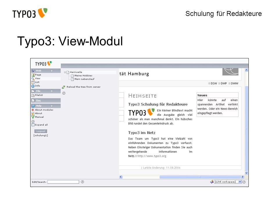 Schulung für Redakteure Typo3: View-Modul