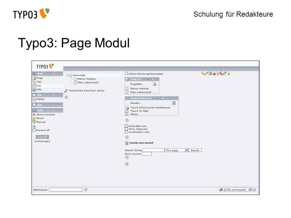 Schulung für Redakteure Typo3: Page Modul