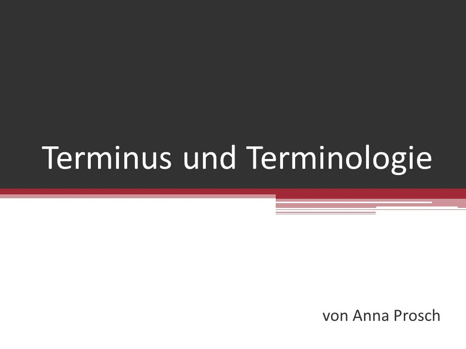 Terminus und Terminologie von Anna Prosch