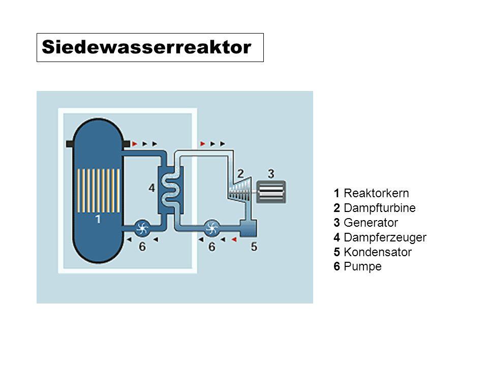 1 Reaktorkern 2 Dampfturbine 3 Generator 4 Dampferzeuger 5 Kondensator 6 Pumpe Siedewasserreaktor