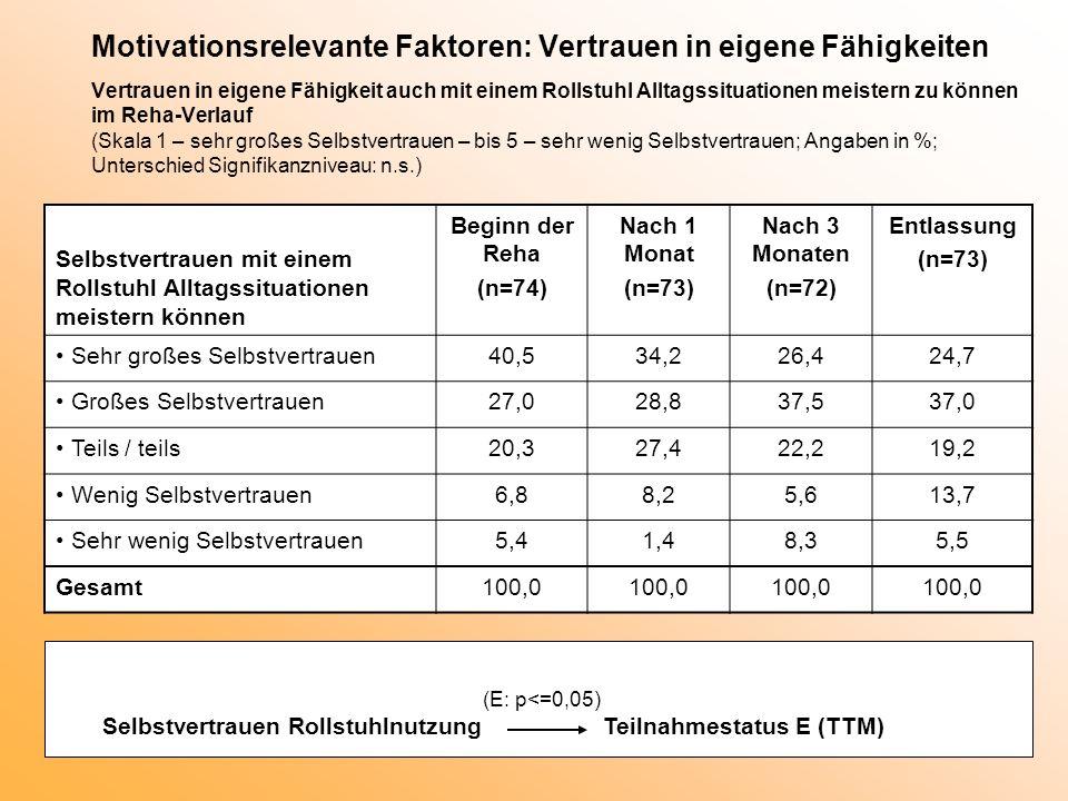 Motivationsrelevante Faktoren: Vertrauen in eigene Fähigkeiten Vertrauen in eigene Fähigkeit auch mit einem Rollstuhl Alltagssituationen meistern zu k