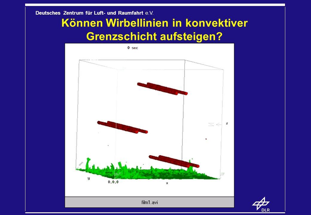 Deutsches Zentrum für Luft- und Raumfahrt e.V. Können Wirbellinien in konvektiver Grenzschicht aufsteigen?
