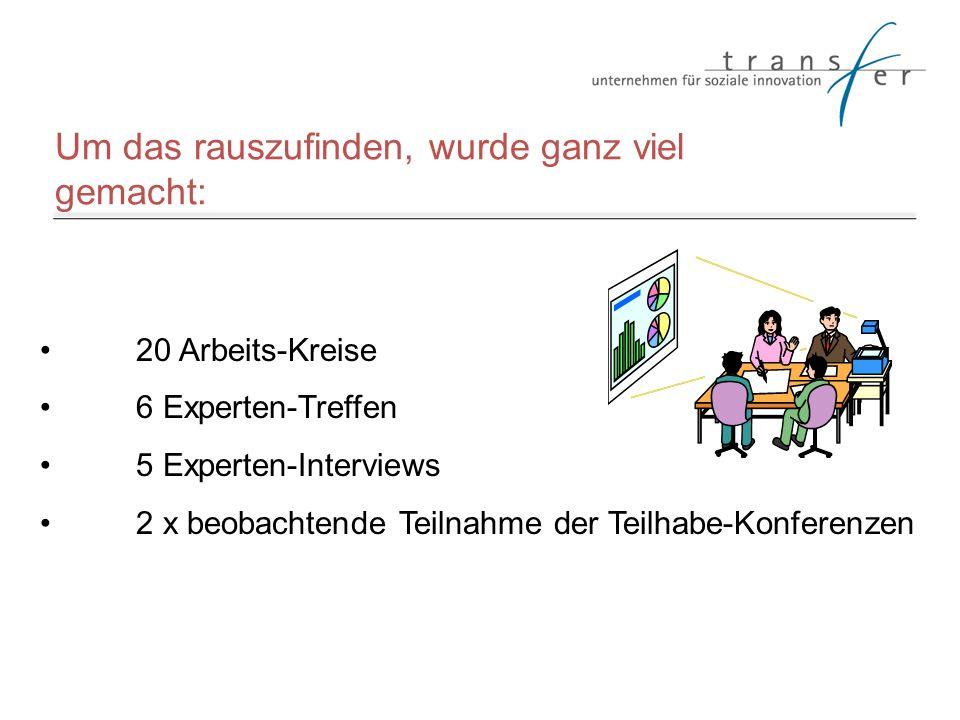 Um das rauszufinden, wurde ganz viel gemacht: 20 Arbeits-Kreise 6 Experten-Treffen 5 Experten-Interviews 2 x beobachtende Teilnahme der Teilhabe-Konfe