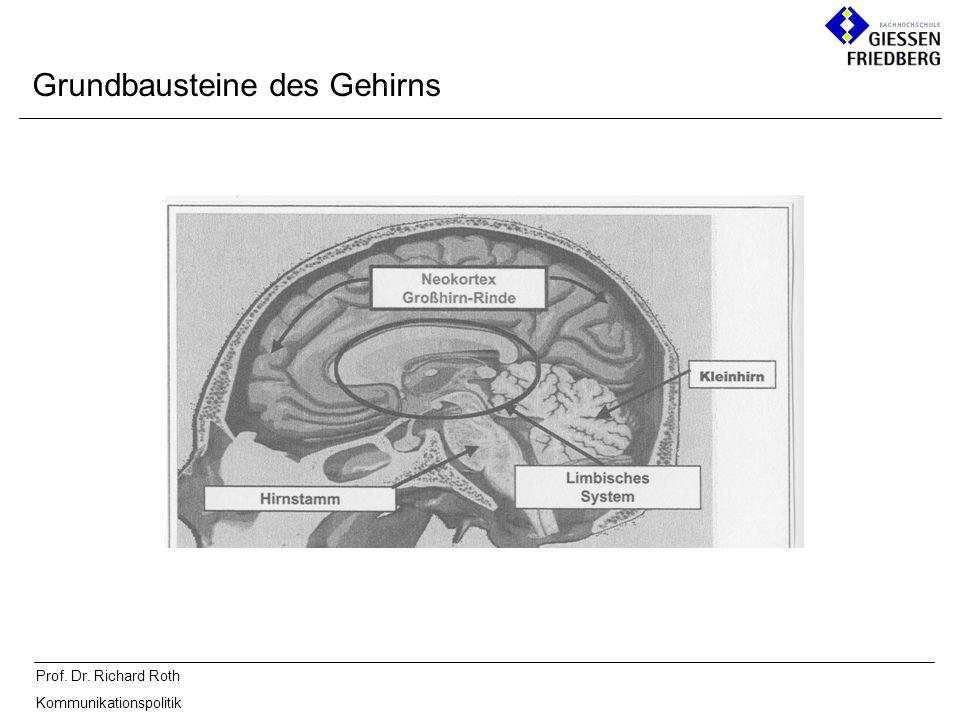 Prof. Dr. Richard Roth Kommunikationspolitik Grundbausteine des Gehirns