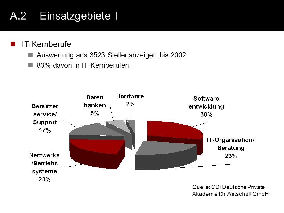 A.2Einsatzgebiete I IT-Kernberufe Auswertung aus 3523 Stellenanzeigen bis 2002 83% davon in IT-Kernberufen: Quelle: CDI Deutsche Private Akademie für