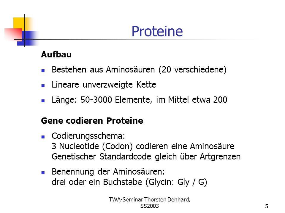 TWA-Seminar Thorsten Denhard, SS20035 Proteine Aufbau Bestehen aus Aminosäuren (20 verschiedene) Lineare unverzweigte Kette Länge: 50-3000 Elemente, i
