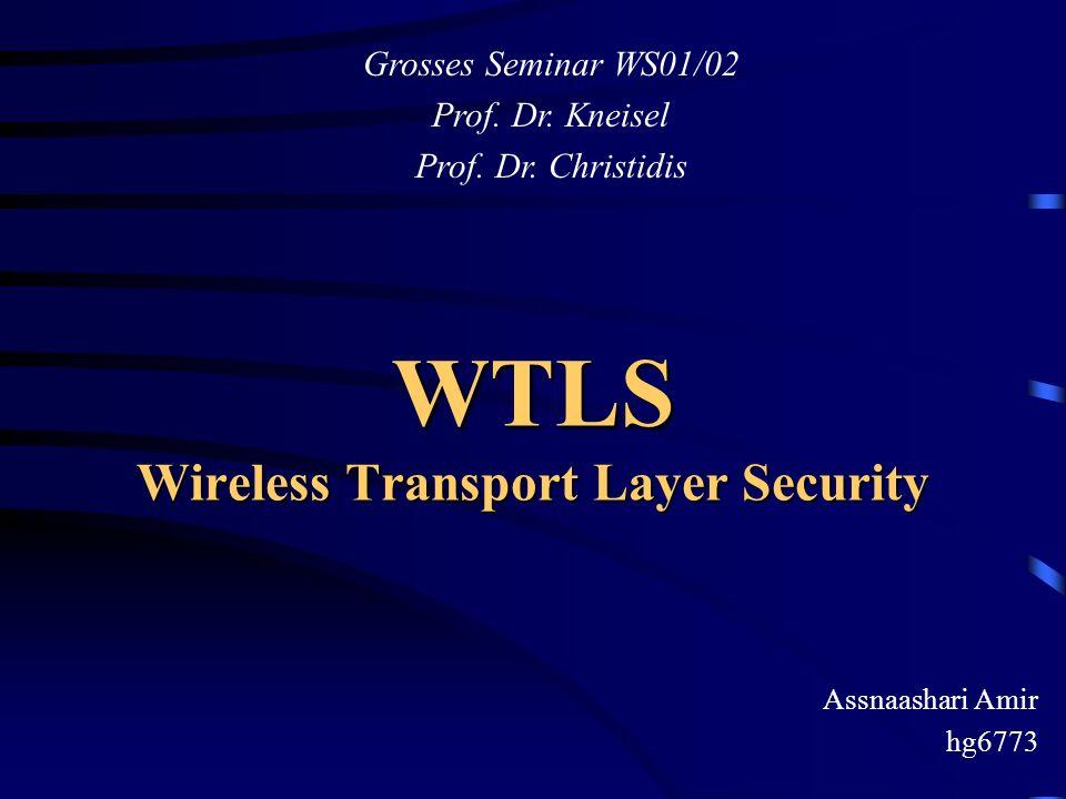 WTLS Wireless Transport Layer Security Assnaashari Amir hg6773 Grosses Seminar WS01/02 Prof. Dr. Kneisel Prof. Dr. Christidis