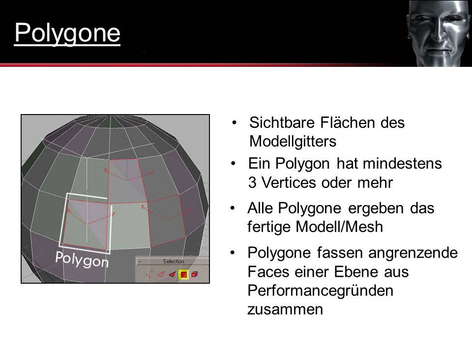 Sichtbare Flächen des Modellgitters Ein Polygon hat mindestens 3 Vertices oder mehr Alle Polygone ergeben das fertige Modell/Mesh Polygone fassen angr