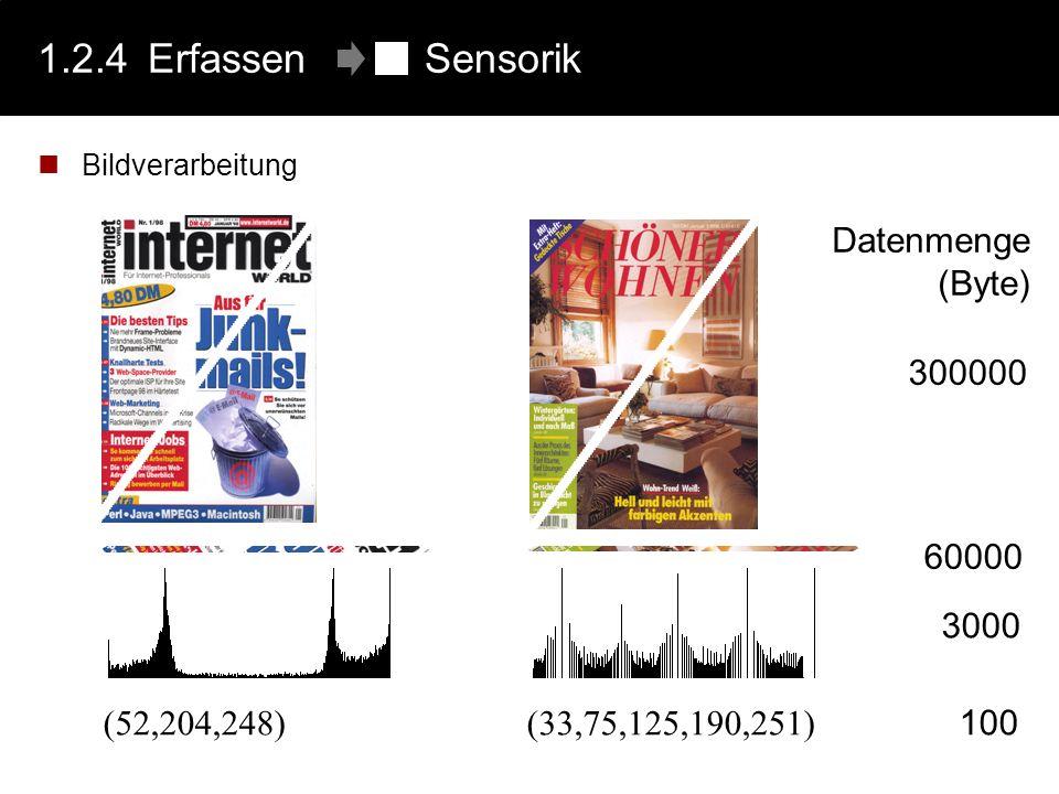 1.2.4Erfassen Sensorik Bildverarbeitung 300000 Datenmenge (Byte) 60000 (52,204,248)(33,75,125,190,251) 3000 100