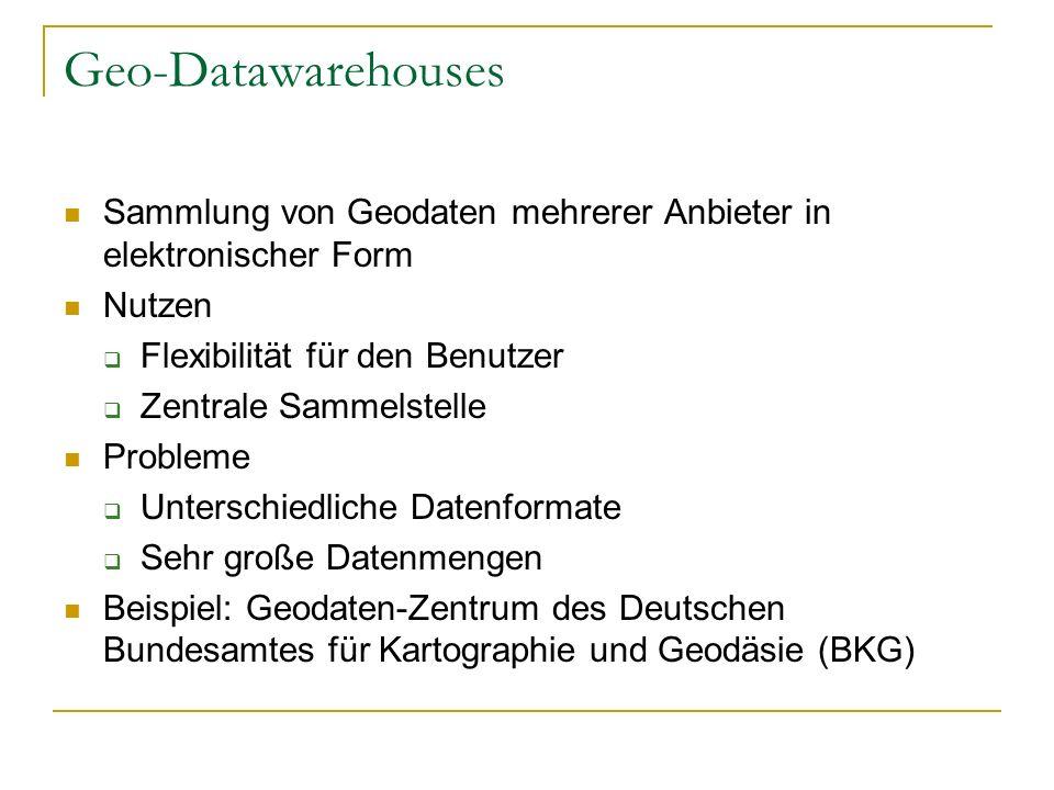 Geo-Datawarehouses Sammlung von Geodaten mehrerer Anbieter in elektronischer Form Nutzen Flexibilität für den Benutzer Zentrale Sammelstelle Probleme Unterschiedliche Datenformate Sehr große Datenmengen Beispiel: Geodaten-Zentrum des Deutschen Bundesamtes für Kartographie und Geodäsie (BKG)