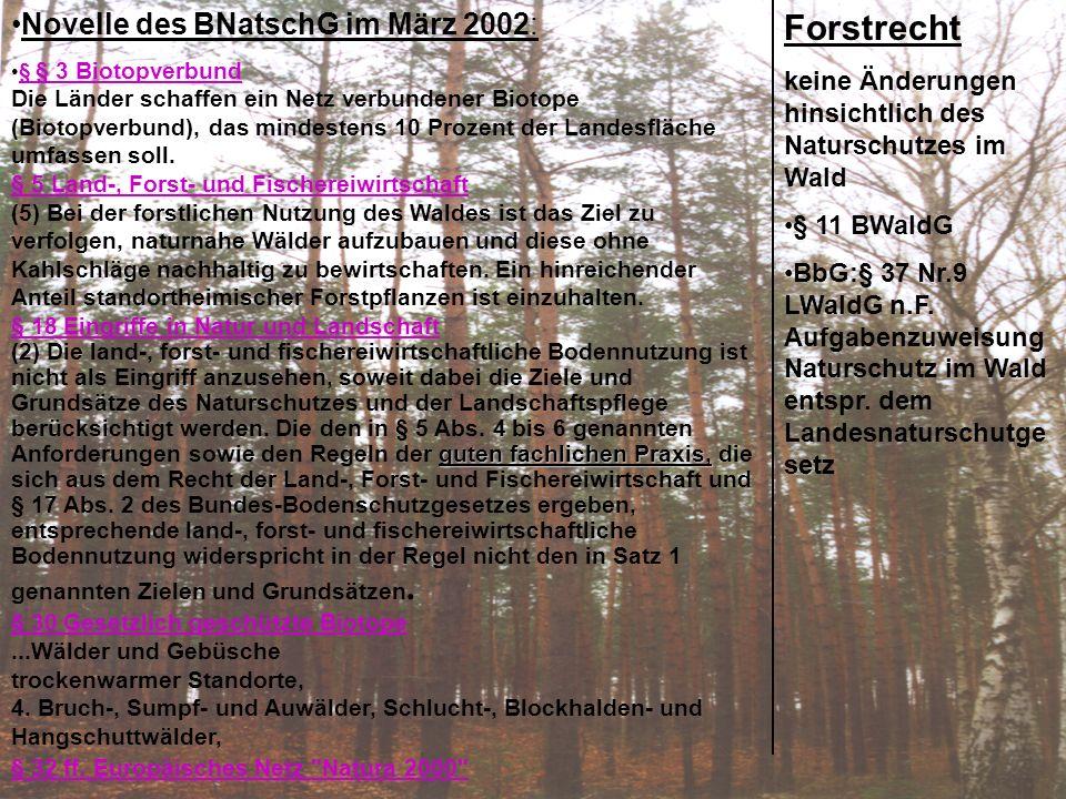 Forstrecht: keine Änderungen hinsichtlich des Naturschutzes im Wald § 11 BWaldG BbG:§ 37 Nr.9 LWaldG n.F. Aufgabenzuweisung Naturschutz im Wald entspr