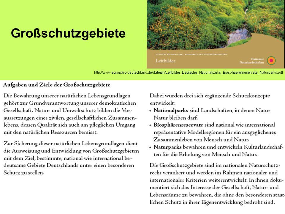 http://www.europarc-deutschland.de/dateien/Leitbilder_Deutsche_Nationalparks_Biosphaerenreservate_Naturparks.pdf Großschutzgebiete