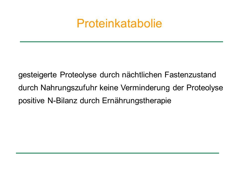 Proteinkatabolie gesteigerte Proteolyse durch nächtlichen Fastenzustand durch Nahrungszufuhr keine Verminderung der Proteolyse positive N-Bilanz durch