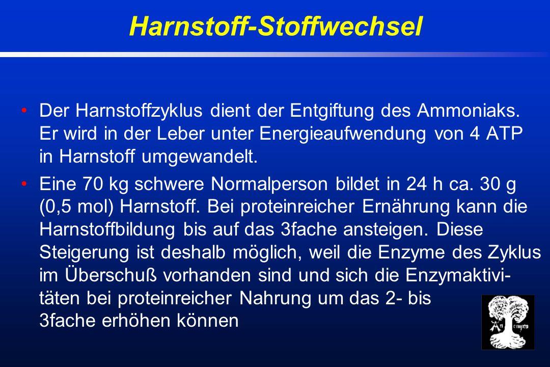 Der Harnstoffzyklus dient der Entgiftung des Ammoniaks.