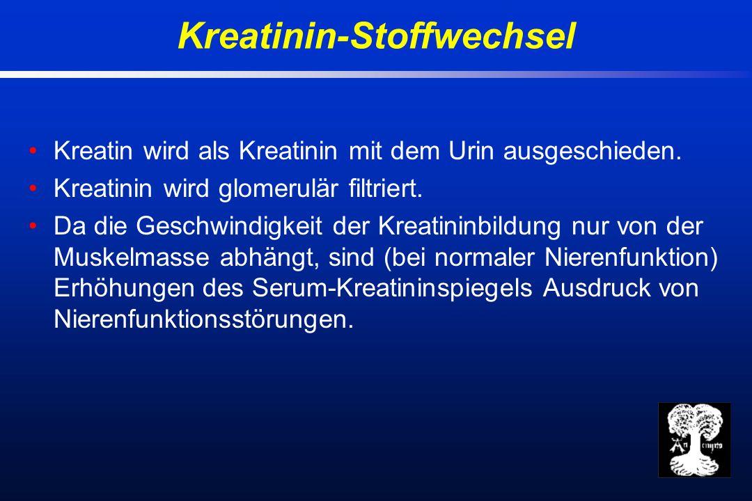 Kreatin wird als Kreatinin mit dem Urin ausgeschieden.