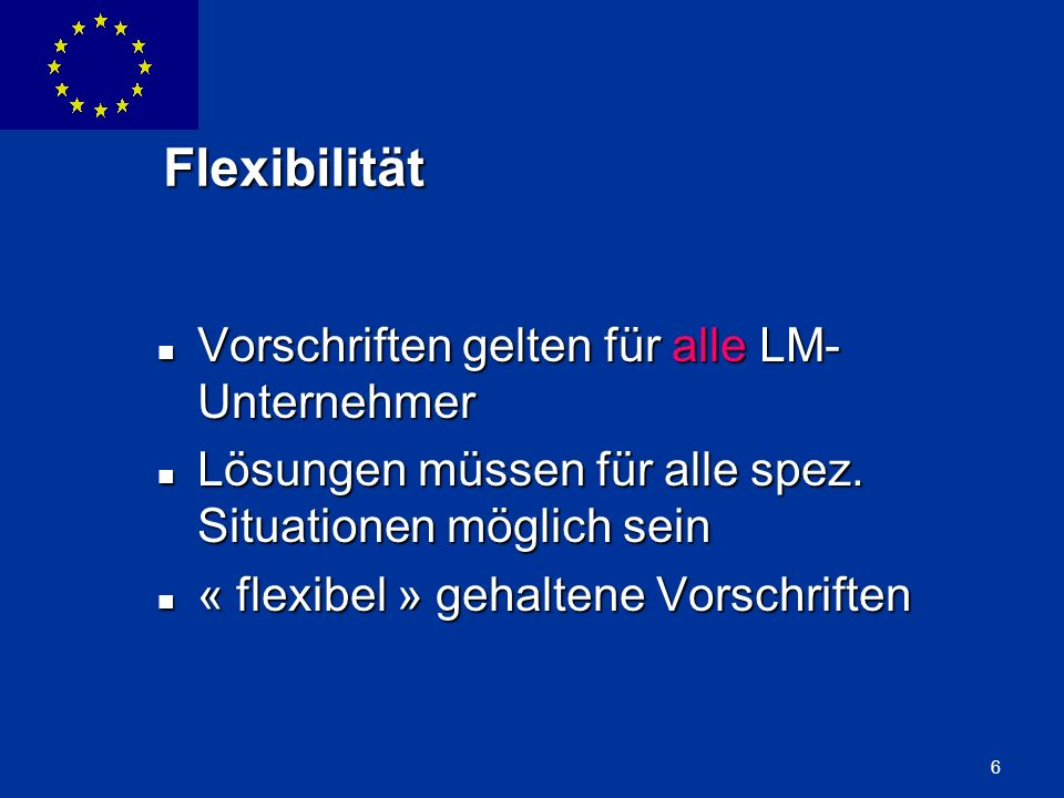 ENLARGEMENT DG 6 Flexibilität Vorschriften gelten für alle LM- Unternehmer Vorschriften gelten für alle LM- Unternehmer Lösungen müssen für alle spez.