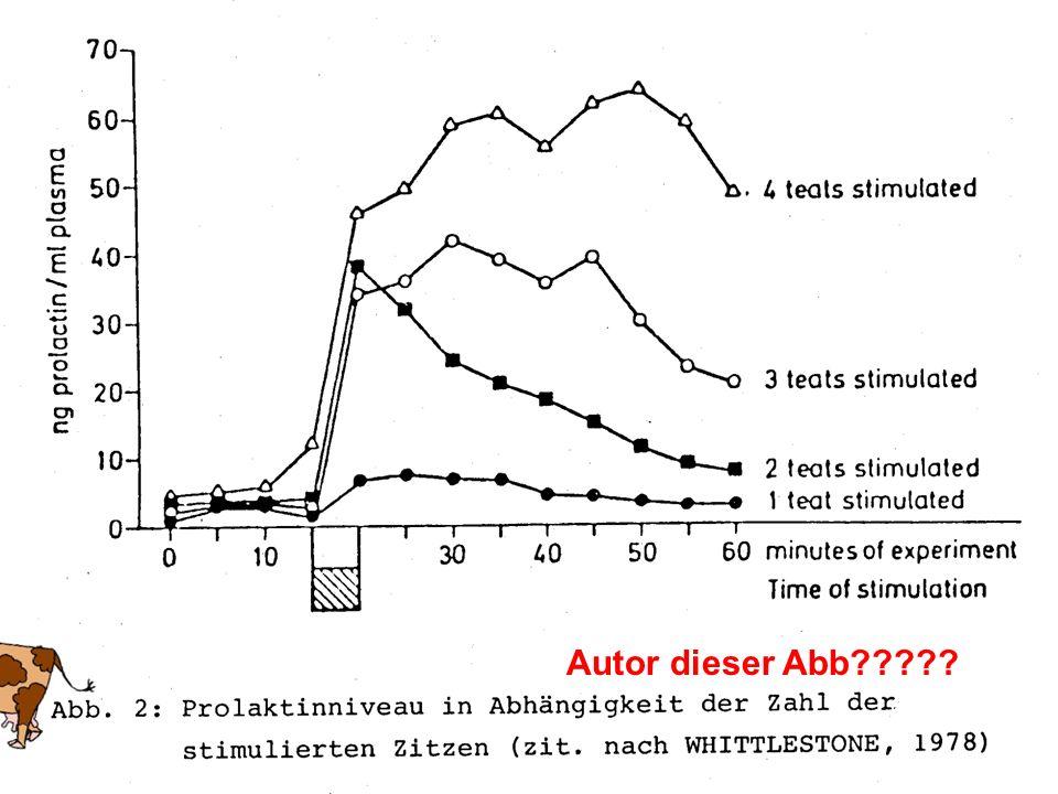 29 Einfluss von ZMZ auf den Gehalt an Ionen K + -Gehalt fällt während des Melkens kontinuierlich, nimmt aber in der Residualmilch wieder zu.