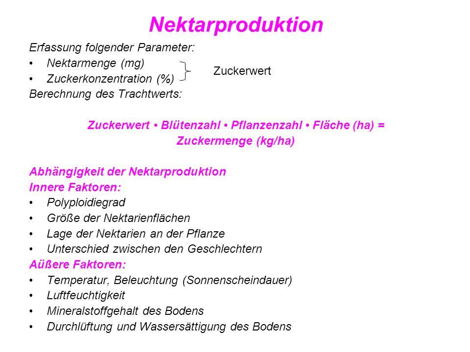 Nektarproduktion einheimischer Trachtpflanzen Familie Zuckerwert Trachtwert Pflanzenart mg Zucker/Blüte/Tag (kg Zucker/ha) Sinapis ssp.