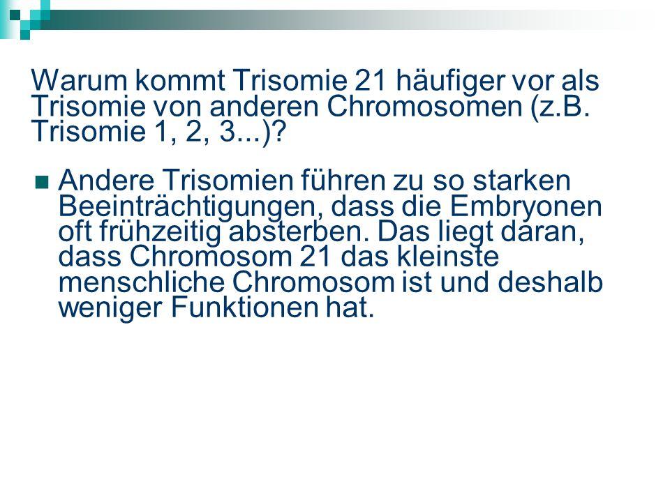 Warum kommt Trisomie 21 häufiger vor als Trisomie von anderen Chromosomen (z.B.