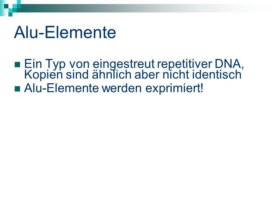 Alu-Elemente Ein Typ von eingestreut repetitiver DNA, Kopien sind ähnlich aber nicht identisch Alu-Elemente werden exprimiert!