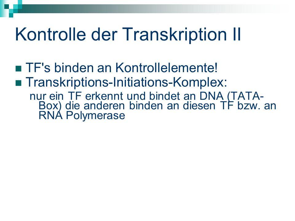 Kontrolle der Transkription II TF s binden an Kontrollelemente.