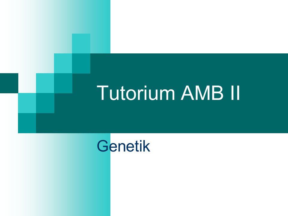 Tutorium AMB II Genetik