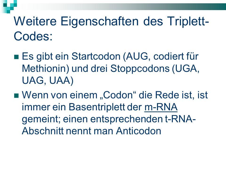 Weitere Eigenschaften des Triplett- Codes: Es gibt ein Startcodon (AUG, codiert für Methionin) und drei Stoppcodons (UGA, UAG, UAA) Wenn von einem Codon die Rede ist, ist immer ein Basentriplett der m-RNA gemeint; einen entsprechenden t-RNA- Abschnitt nennt man Anticodon