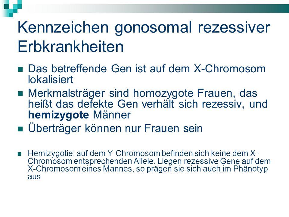 Kennzeichen gonosomal rezessiver Erbkrankheiten Das betreffende Gen ist auf dem X-Chromosom lokalisiert Merkmalsträger sind homozygote Frauen, das heißt das defekte Gen verhält sich rezessiv, und hemizygote Männer Überträger können nur Frauen sein Hemizygotie: auf dem Y-Chromosom befinden sich keine dem X- Chromosom entsprechenden Allele.