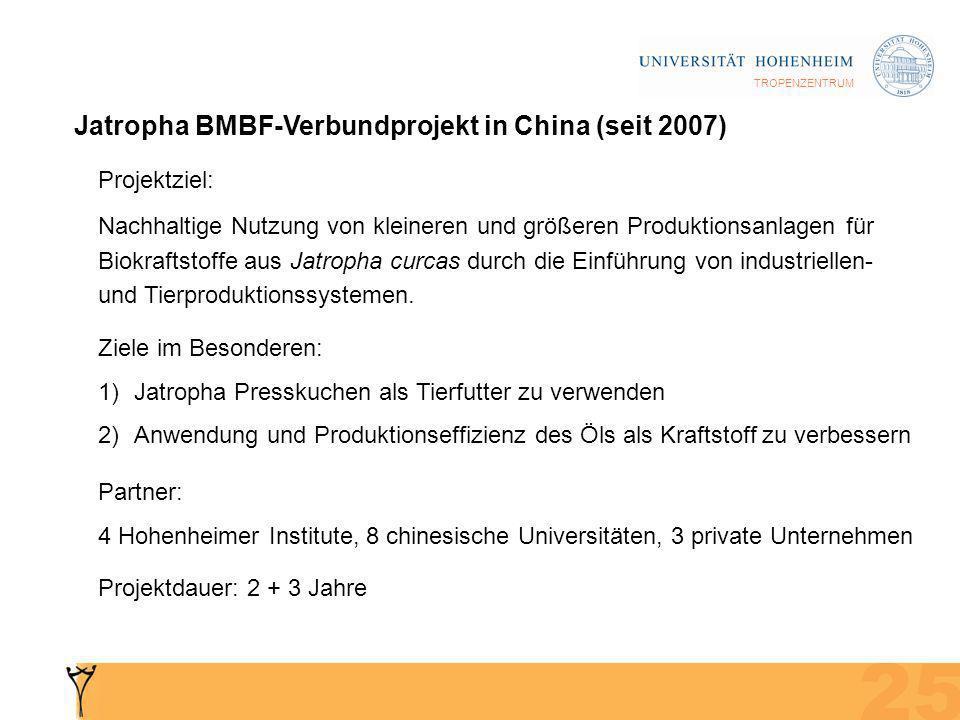 TROPENZENTRUM Jatropha BMBF-Verbundprojekt in China (seit 2007) Projektziel: Nachhaltige Nutzung von kleineren und größeren Produktionsanlagen für Biokraftstoffe aus Jatropha curcas durch die Einführung von industriellen- und Tierproduktionssystemen.