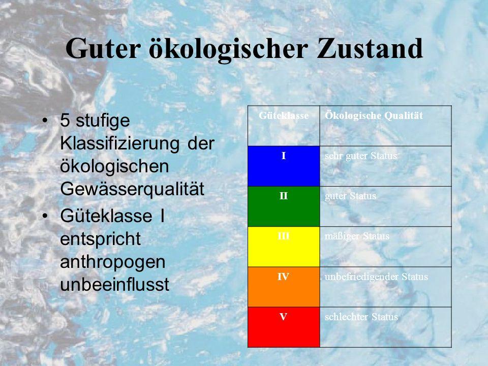 Guter ökologischer Zustand 5 stufige Klassifizierung der ökologischen Gewässerqualität Güteklasse I entspricht anthropogen unbeeinflusst GüteklasseÖkologische Qualität Isehr guter Status IIguter Status IIImäßiger Status IVunbefriedigender Status Vschlechter Status