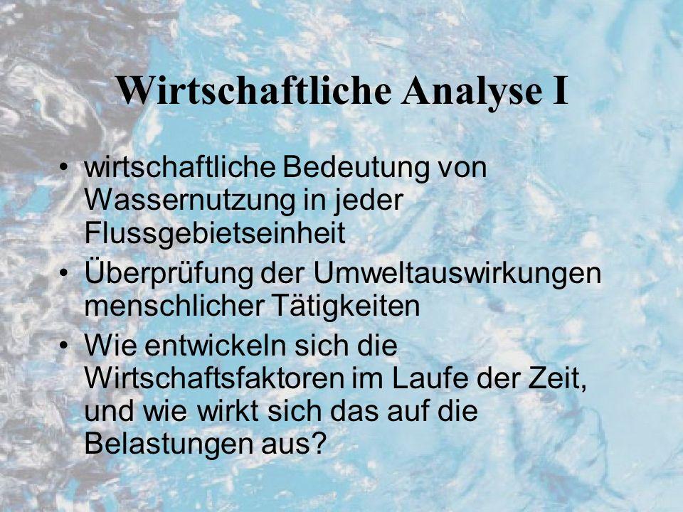 Wirtschaftliche Analyse I wirtschaftliche Bedeutung von Wassernutzung in jeder Flussgebietseinheit Überprüfung der Umweltauswirkungen menschlicher Tätigkeiten Wie entwickeln sich die Wirtschaftsfaktoren im Laufe der Zeit, und wie wirkt sich das auf die Belastungen aus?