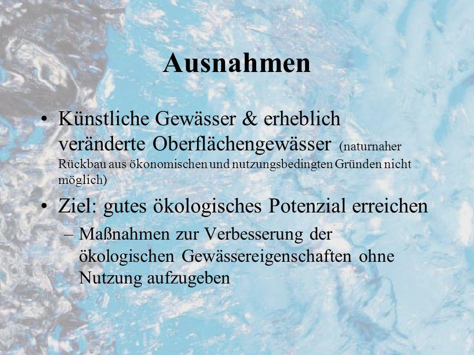 Ausnahmen Künstliche Gewässer & erheblich veränderte Oberflächengewässer (naturnaher Rückbau aus ökonomischen und nutzungsbedingten Gründen nicht möglich) Ziel: gutes ökologisches Potenzial erreichen –Maßnahmen zur Verbesserung der ökologischen Gewässereigenschaften ohne Nutzung aufzugeben