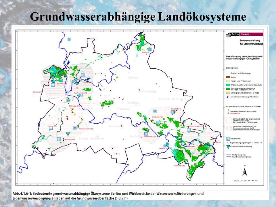 Endergebniss Oberflächenwasser –250km Fliessgewässer, 100km künstlich, 110 erheblich verändert, 2 Gewässer annähernd naturnah –Zielstellung bisher bei 1% erreicht, bei 25% unklar, bei 74% unwahrscheinlich (beinhaltet auch künstl.