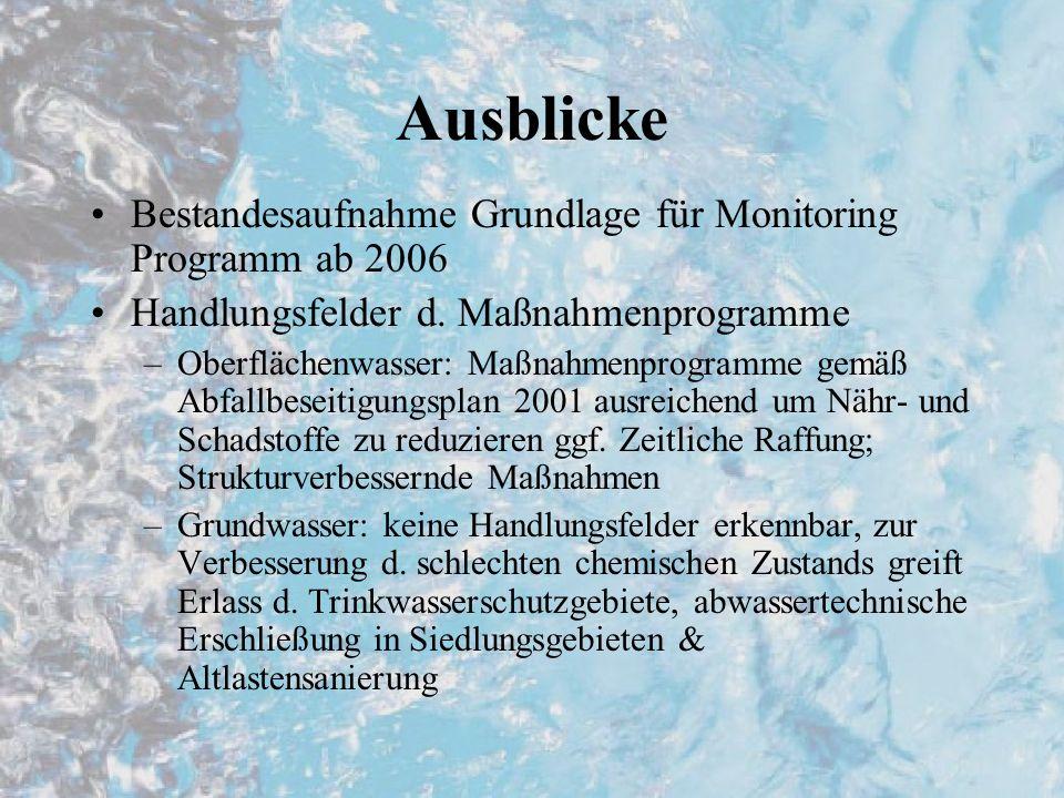 Ausblicke Bestandesaufnahme Grundlage für Monitoring Programm ab 2006 Handlungsfelder d. Maßnahmenprogramme –Oberflächenwasser: Maßnahmenprogramme gem