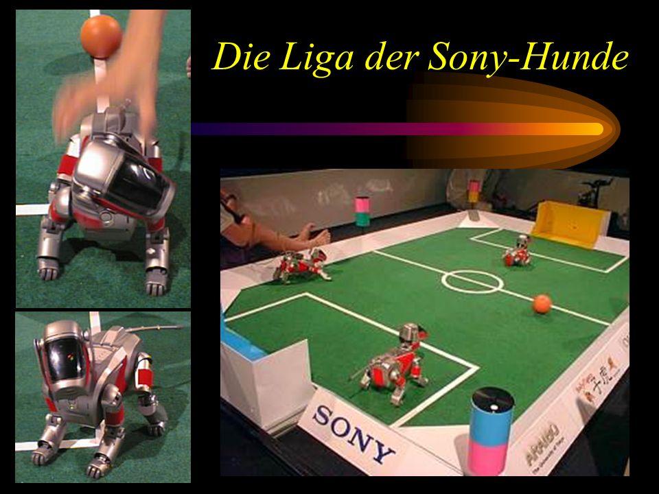 Die Liga der Sony-Hunde