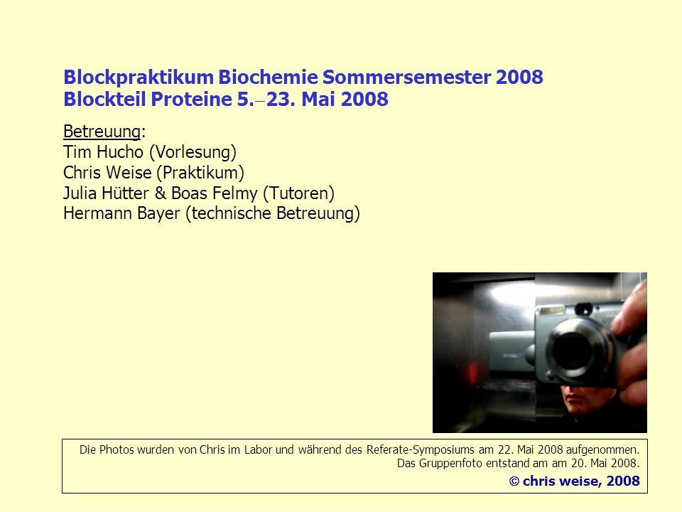 Blockpraktikum Biochemie Sommersemester 2008 Blockteil Proteine 5. 23. Mai 2008 Betreuung: Tim Hucho (Vorlesung) Chris Weise (Praktikum) Julia Hütter
