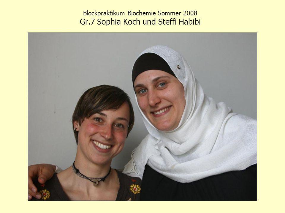 Blockpraktikum Biochemie Sommer 2008 Gr.7 Sophia Koch und Steffi Habibi