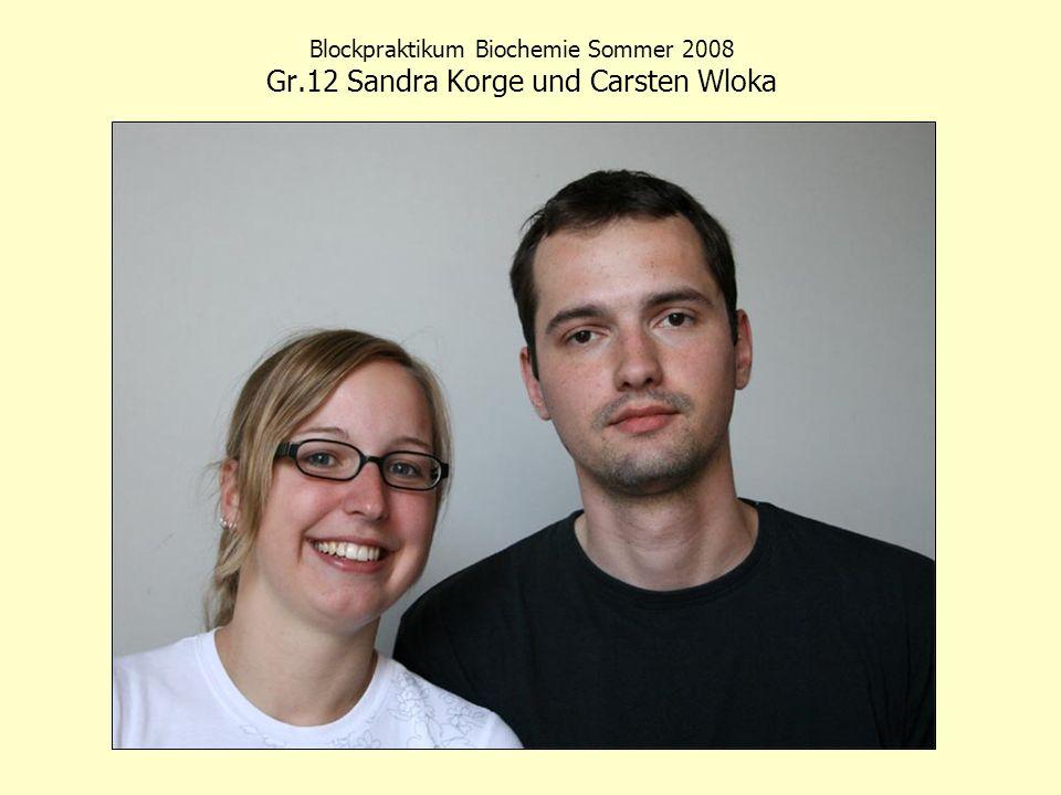 Blockpraktikum Biochemie Sommer 2008 Gr.12 Sandra Korge und Carsten Wloka