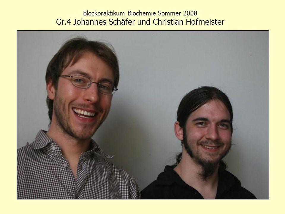 Blockpraktikum Biochemie Sommer 2008 Gr.4 Johannes Schäfer und Christian Hofmeister