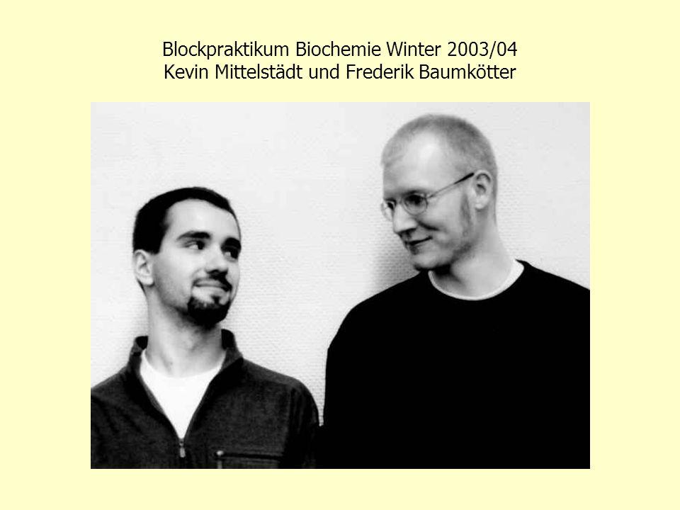 Blockpraktikum Biochemie Winter 2003/04 Tobias Homberg, Paris Sidiropoulos, Guido Durian
